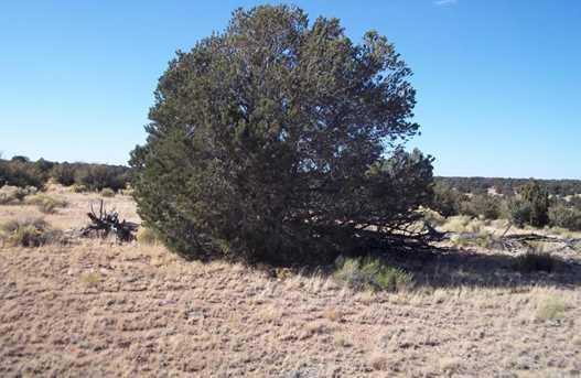 10142 Sun Valley Trail - Photo 4