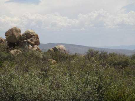 61 Sheridan View Way - Photo 12
