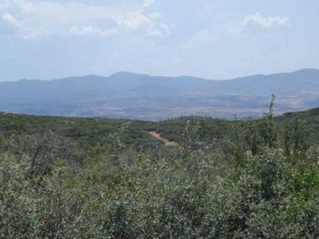 64 Sheridan View Way - Photo 14