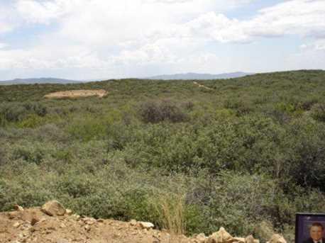 64 Sheridan View Way - Photo 18