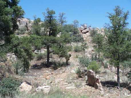 6650 Box Canyon - - Photo 1