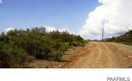 12769 Oak Hills Trail - Photo 10