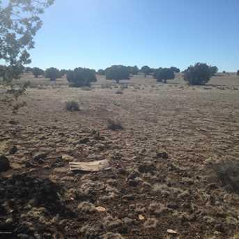 24 Off Of Antelope Run - Photo 8