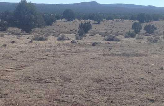 24 Off Of Antelope Run - Photo 6