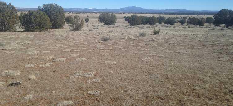 24 Off Of Antelope Run - Photo 2