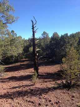 441 Arizona - Photo 8