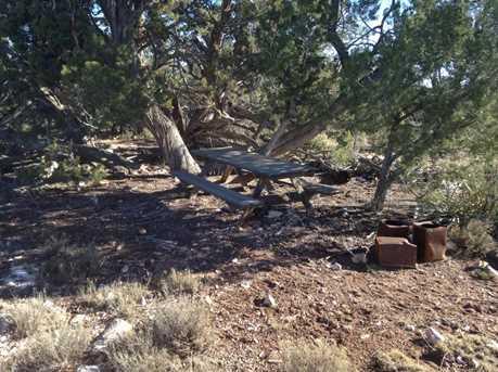 441 Arizona - Photo 12