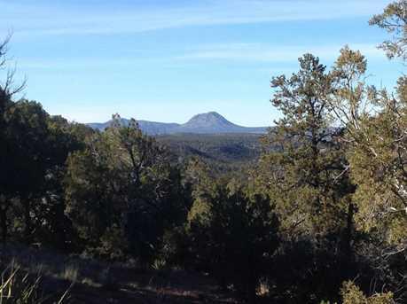 441 Arizona - Photo 10