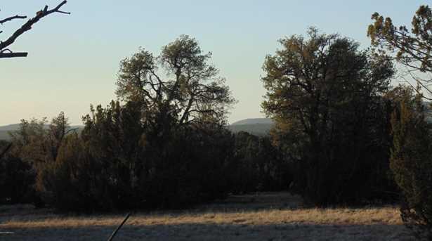 781 Sierra Verde Ranch - Photo 10
