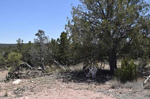 487 Sierra Verde Ranch - Photo 4