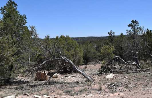 487 Sierra Verde Ranch - Photo 12