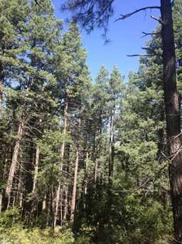 0 Pristine Pines - Photo 4