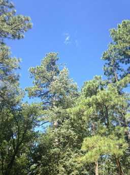 0 Pristine Pines - Photo 8