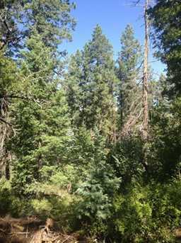 0 Pristine Pines - Photo 10