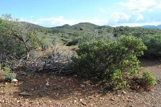 14150 Rattlesnake Trail - Photo 2