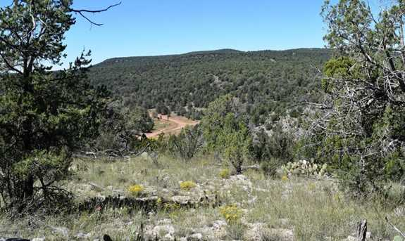 264 Sierra Verde Ranch - Photo 4