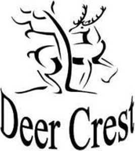 Deer Crest Ct - Photo 1