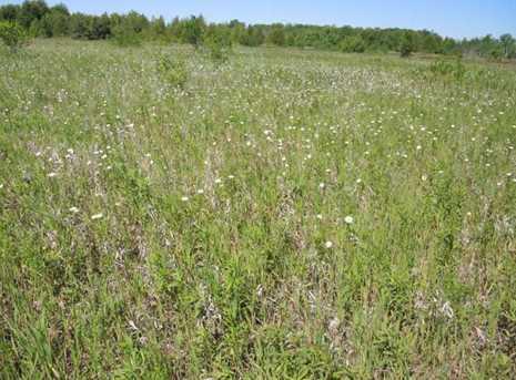 8805 W Meadow Rd - Photo 6