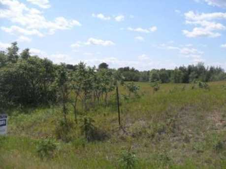 Lot 11 River Lane - Photo 4