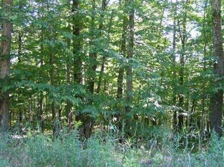 6.3 Acres Forest Valley Road - Photo 4