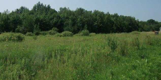 14311 Mountain Bay Road #Lot 9 - Photo 4