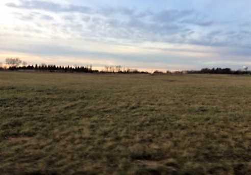 Lot 11 Prairie Grass Drive - Photo 1