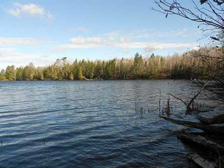 Bear Lake Rd - Photo 2