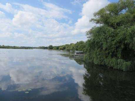 L3 Fox River Ln - Photo 6