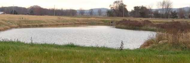 Lot 35 Welter Dr - Photo 1