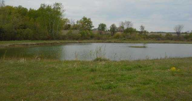 122.37 Ac County Road Cm - Photo 10