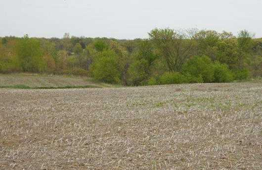 122.37 Ac County Road Cm - Photo 6