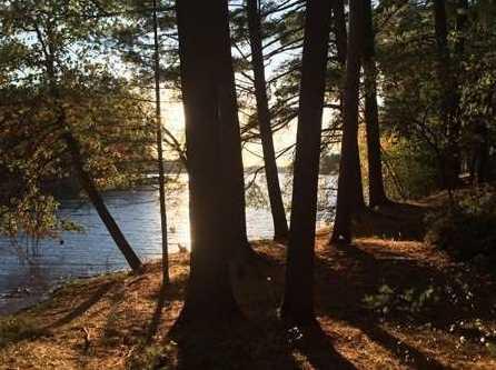 L93 East Shore Trail - Photo 4