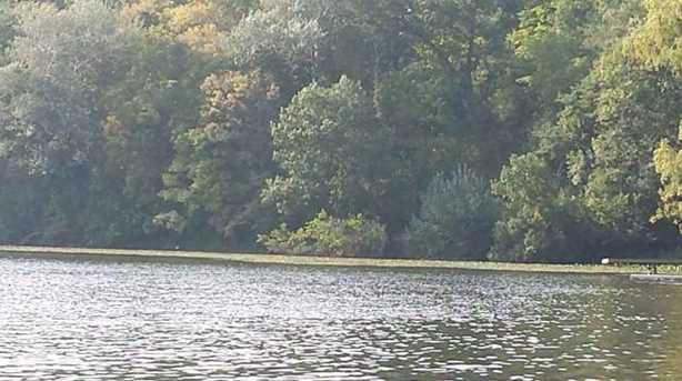 L1 Silver Lake Dr - Photo 2