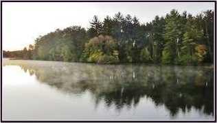 L38 Lake Edge Trail - Photo 20