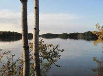 L38 Lake Edge Trail - Photo 14