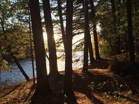 L38 Lake Edge Trail - Photo 12