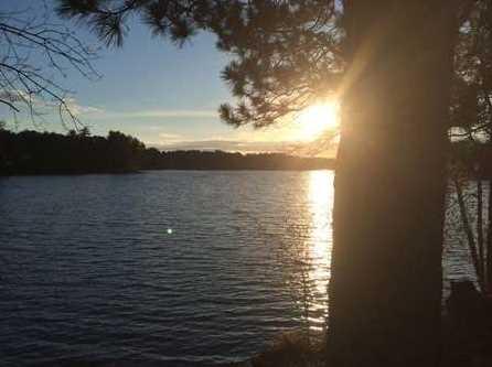 L38 Lake Edge Trail - Photo 10