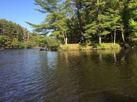 L38 Lake Edge Trail - Photo 24