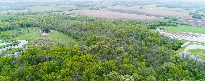 37 Ac County Road D - Photo 10