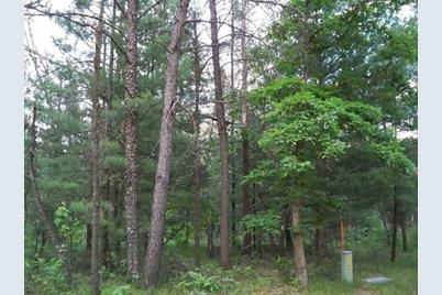 2.38 Ac Woodland Ln - Photo 1