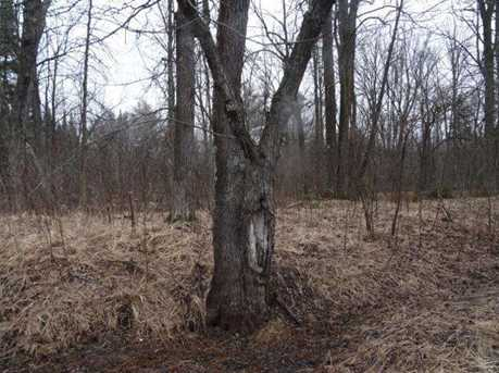 Lot Chippewa Trail - Photo 4