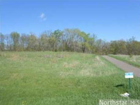 954 150th (Lot 35) Ave - Photo 1