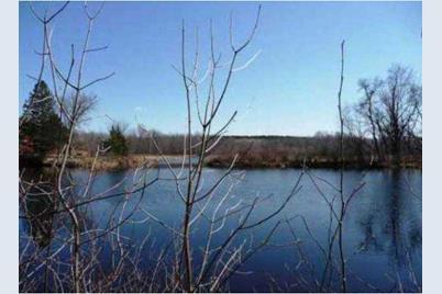 0000 Barker Lake Rd - Photo 1