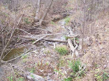 0 Millers Run Back Run Road - Photo 10