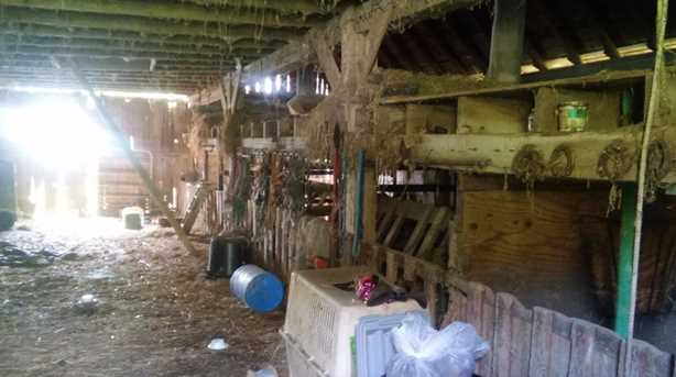 3252 US Rt 52 - Photo 6