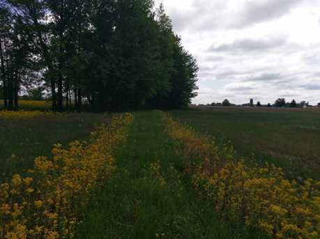 0 N County Line Road - Photo 4