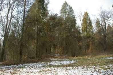 15 Pine Run Lane - Photo 2
