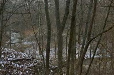 15 Pine Run Lane - Photo 4