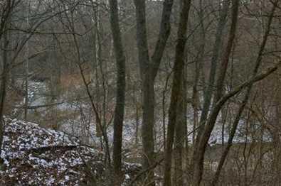 18 Pine Run Lane - Photo 4