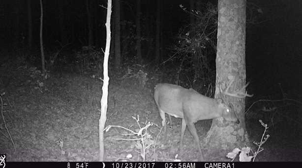 6705 Camp Creek Rd - Photo 18